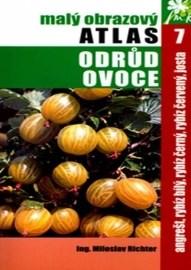Malý obrazový atlas odrůd ovoce 7.
