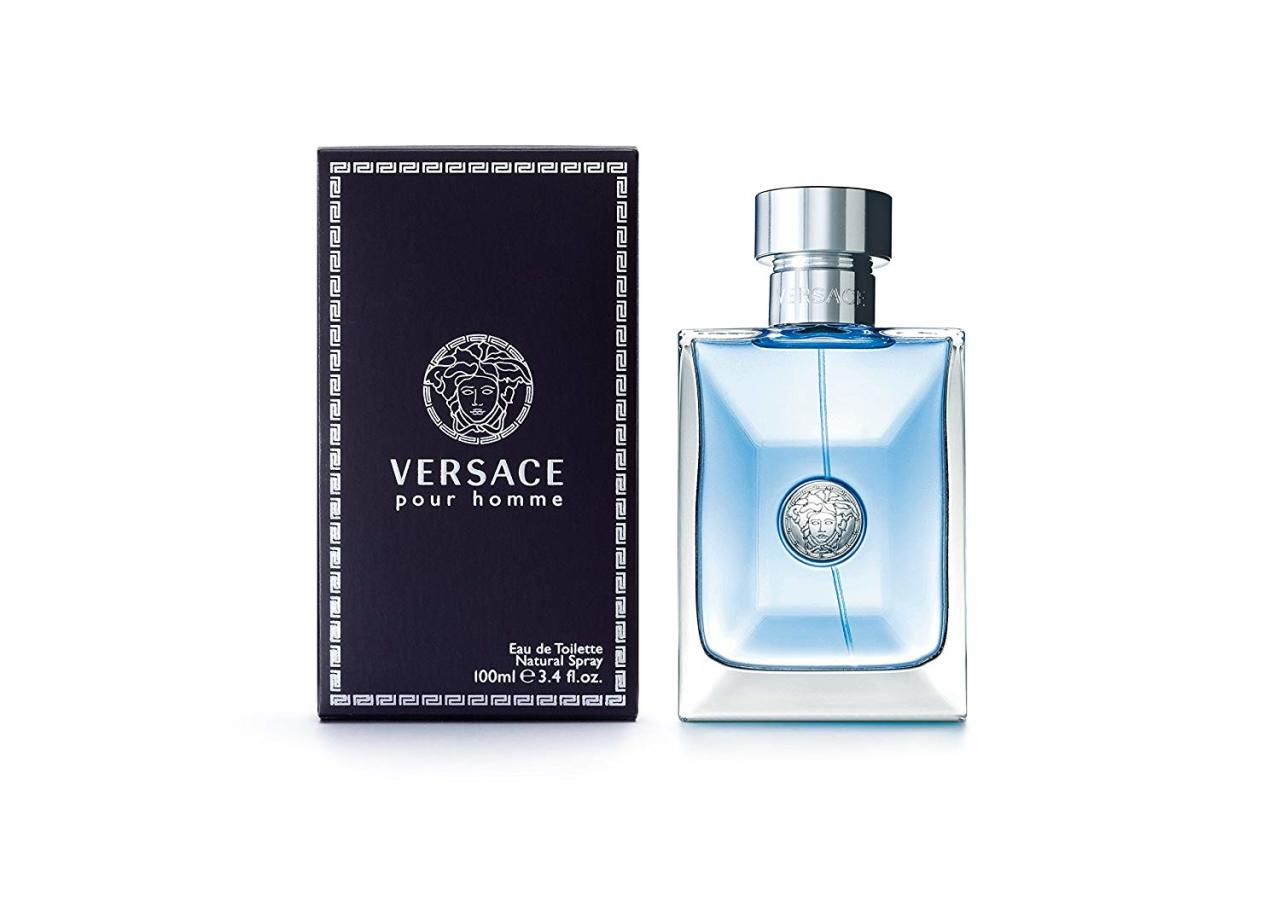 Versace Pour Homme 100ml od 32,64 €   Pricemania 7ad4a683a3f