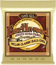 Ernie Ball Earthwood 2069