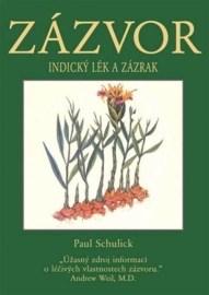 Zázvor (kniha)
