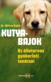 Kutyabajok - Az állatorvos gyakorlati tanácsai