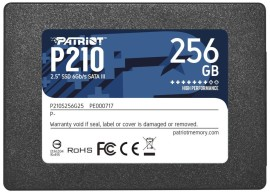 Patriot P210 256GB