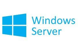 Microsoft Windows Server 2019 Standard P73-07788