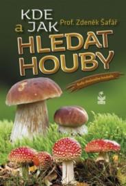 Kde a jak hledat houby